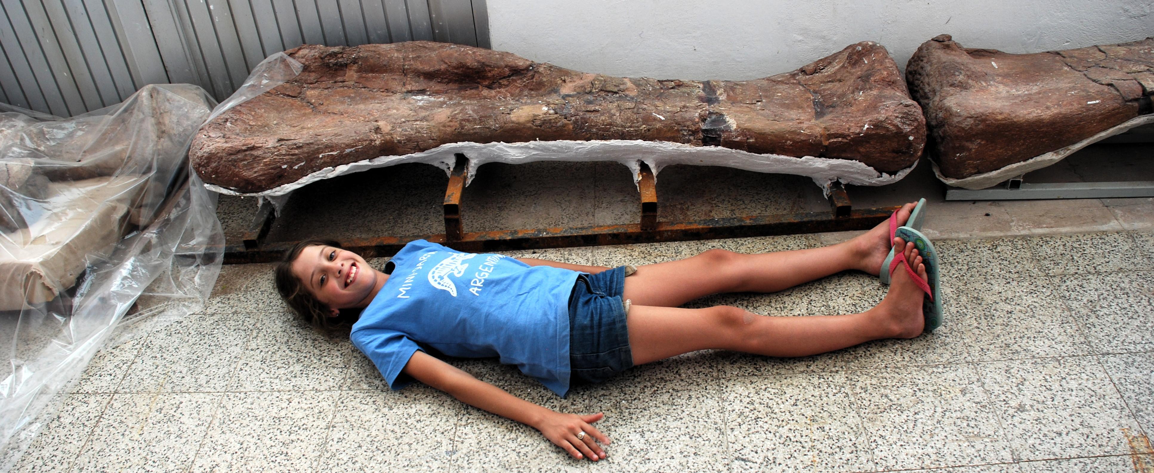 A confronto con un femore di dinosauro nel laboratorio di paleontologia di El Chocón