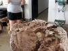 Lo Scorpiovenator ancora nel bozzolo, nel laboratorio di paleontologia di I resti di Giganotosauro al museo di El Chocón