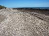 La spiaggia di Monte Hermoso dove Darwin scoprì fossili di antichi mammiferi estinti