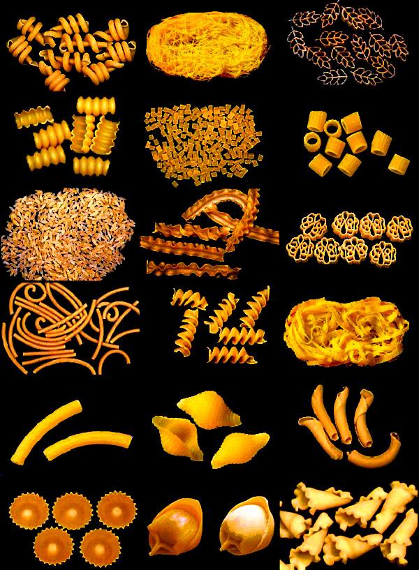 Minidarwin esperimenti l albero evolutivo della pasta - Diversi tipi di pasta ...