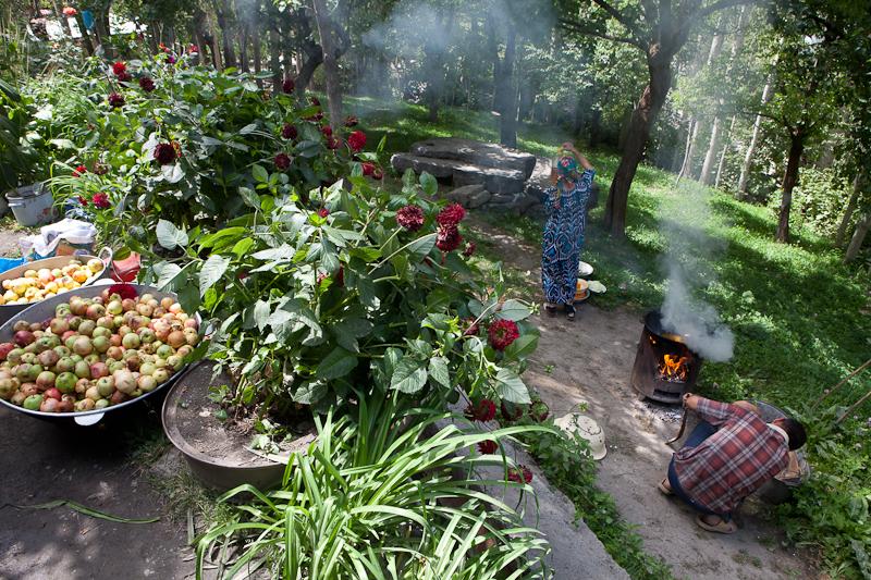 Frutteto giardino fiorito marcopolo2012 for Giardino fiorito